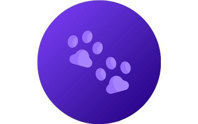 Sentinel Spectrum Large Dogs  Pack Best Price